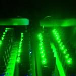 Creepy-Green-Light-5kMXdet