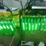 green-Xtgk2mj
