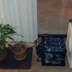 plants-ToupcFz